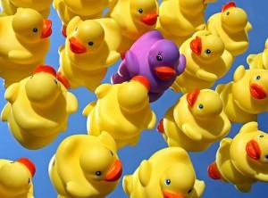 la diversité en entreprise, c'est aussi facile que ça ?