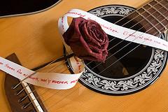 guitare et rose neruda