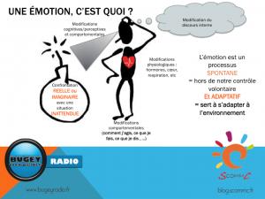 schema 4 definition emotion