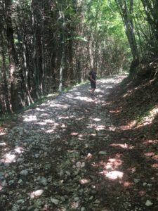 aventure en famille : chemin forestier pour la montée au clergeon